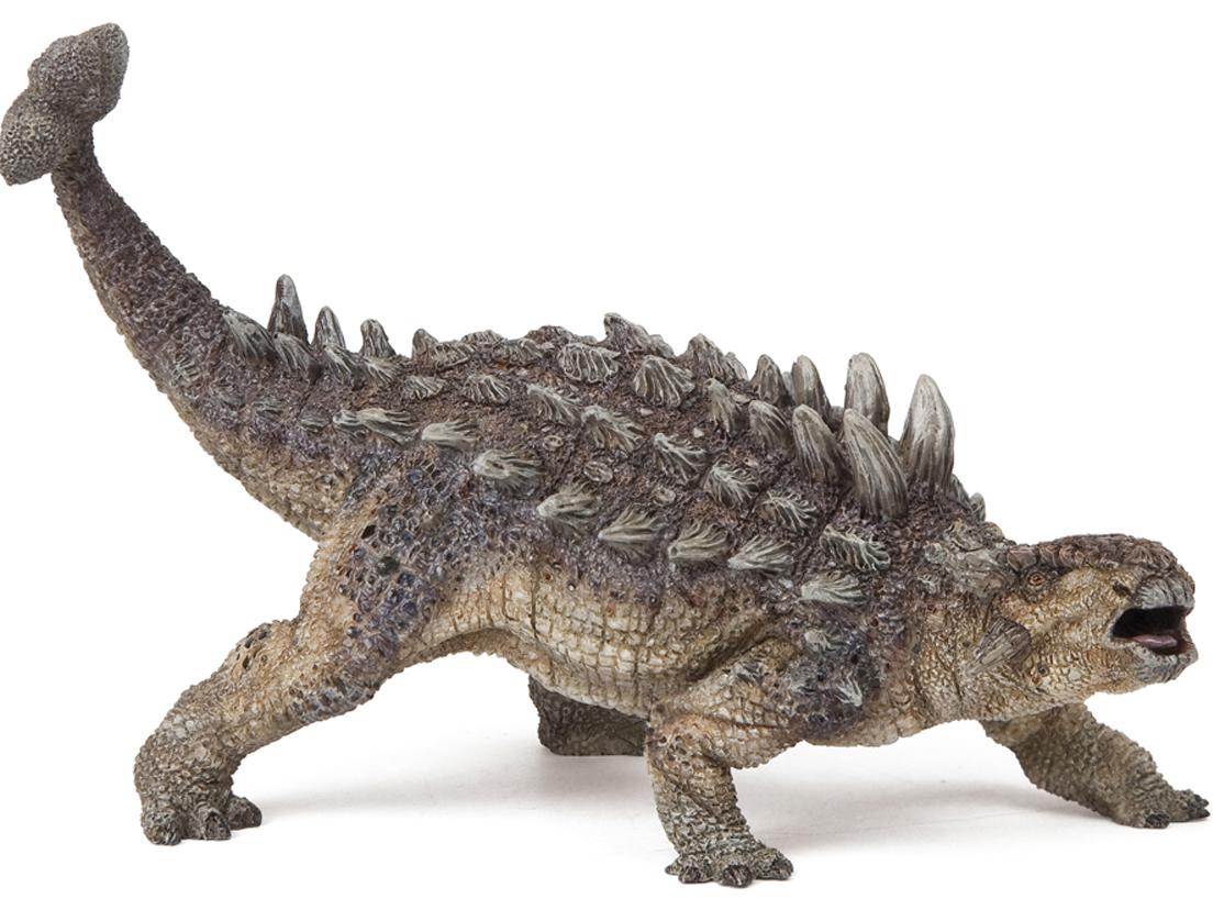 Ankylosaurus on Baby Dinosaurs