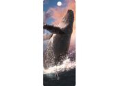Bookmark 3D Whale Jump