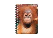 Notebook 3D Baby orangutan small