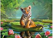 Bild 3D Tiger & näckros
