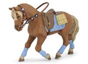 Ryttare Häst