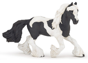 Irish Cob black/white