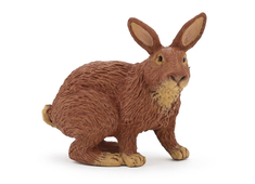 Rabbit brown