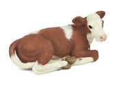 Calf Simmental resting brown/wh)