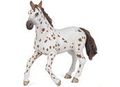 Appaloosa Mare brown