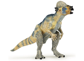 Pachycephalosaurus young