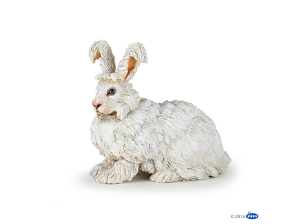 Kanin angora