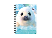 Notebook 3D Seal Pups (small)